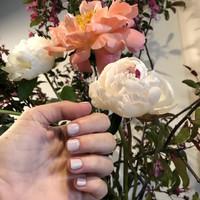 Nails (137)