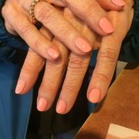 Nails (236)